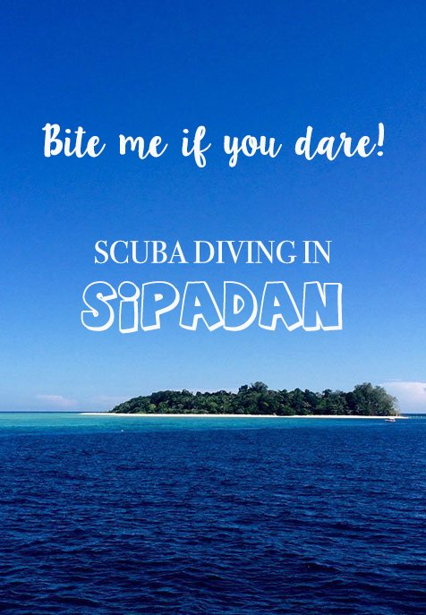 Do you want to go diving in Sipadan? This treasure first discovered by Jacques Cousteau in offers some of the best diving in the world & is definitely not for the fainthearted. #borneo #sipadan #malaysia #scubadiving