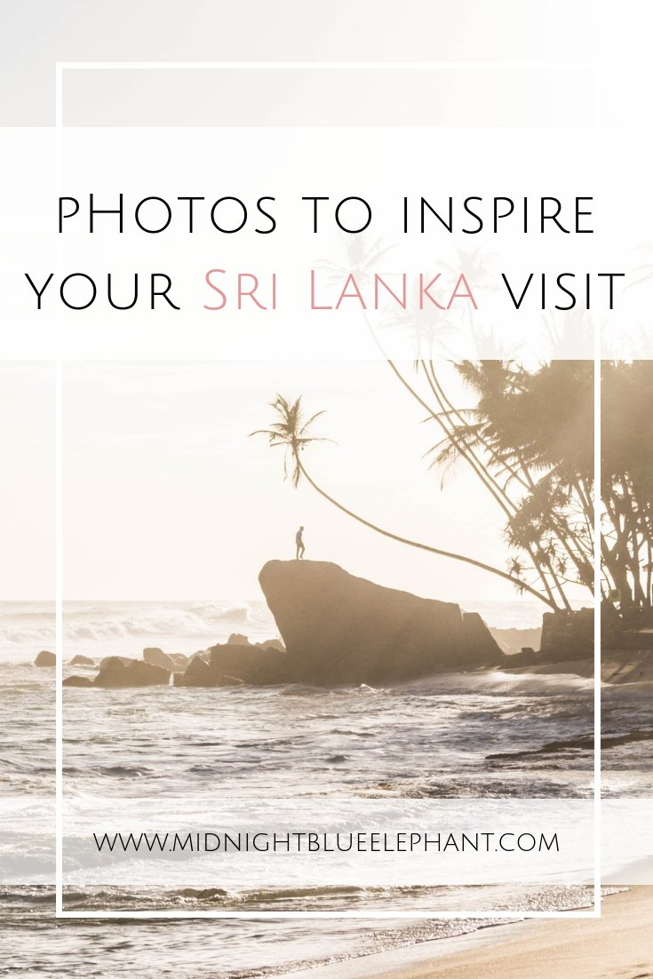 Need some inspiration to see the most beautiful places in Sri Lanka and why you should visit? Check out my favorite Sri Lanka pictures and where to go.  Including places in Galle, Colombo, Mirissa Beach, Sigiriya and of course, elephants, kittens, and cheeky monkeys. #srilanka #colombo #mirissa #galle #Sigiriya #elephants
