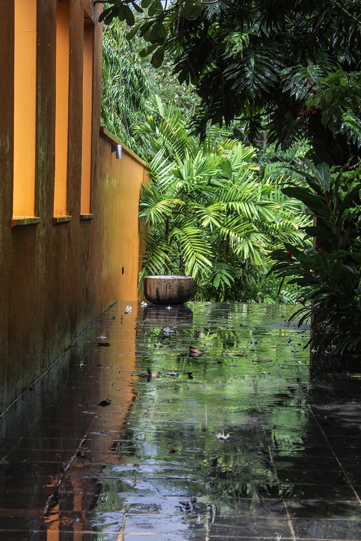 Green Dreams Amp Outdoor Showers Kahanda Kanda Sri Lanka