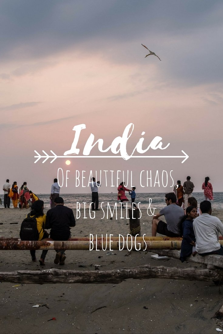 My first time in India was so different than I excepted and everything I could have hoped for. A story of beautiful chaos, big smiles & blue dogs.