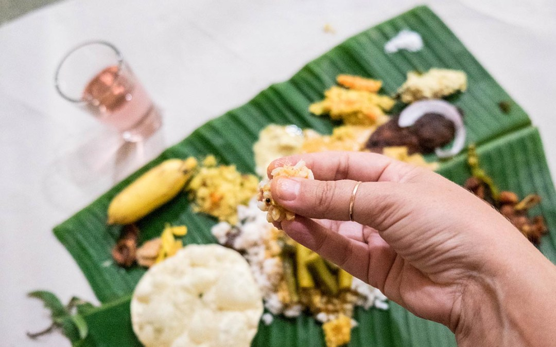Exploring India one bite at a time & How to avoid getting sick.