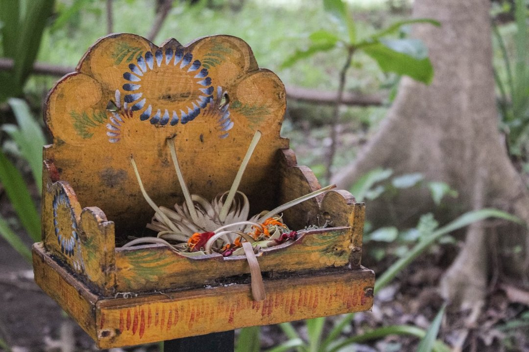 Balinese offering