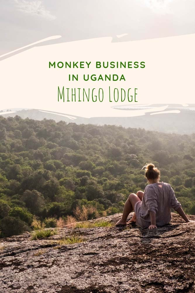 Do you want to combine the experience of staying in one of the top luxury lodges in Uganda, Africa with some innocent monkey business? Check out Mihingo Lodget at Lake Mburo National Park. #uganda #africa #lakemburo #nationalpark #nationalparkuganda #lakemburonationalpark #monkey #monkeybusiness #luxurylodge #safarilodge