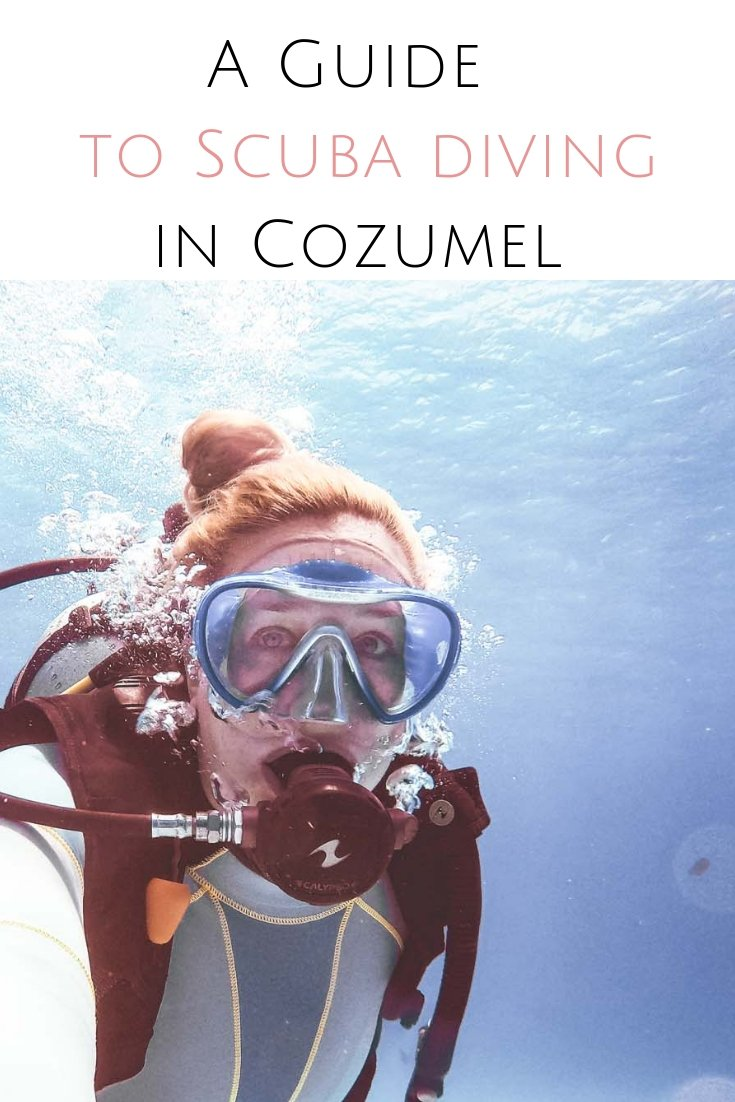 If you want to explore some of the best dive sites in Mexico you need to go diving in Cozumel & the cenotes in Riviera Maya. A guide to the best scuba diving in the Great Maya Barrier Reef & the Yucatan cenotes. #cozumel #mexico #yucatan #playadelcarmen #rivieramaya #scubadiving #cozumeldiving #cenote #mexicancenote