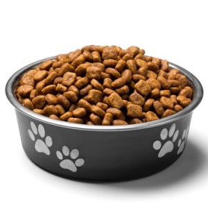 pet food magnet for rodents