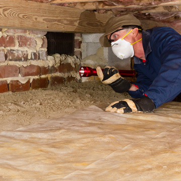 why you need a termite inspection