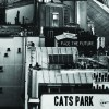 Face the Future by Cats Park