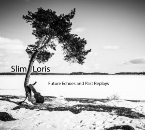 Future Echoes and Past Replays by Slim Loris