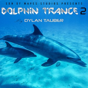 Dylan Tauber Releases Uplifting Electronic Project, Dolphin Trance 2