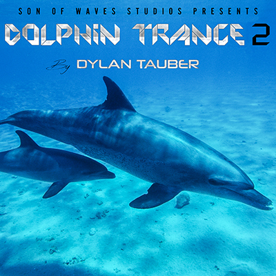 dylan-tauber-dolphin-trance-2
