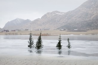 SleepwalkersChronicles01HASETH