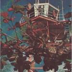 Midway Island Postcard