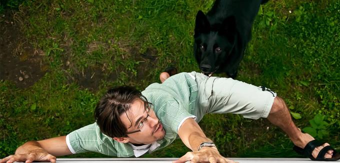 miedo a los animales