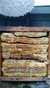 ruche warre, ruche warré, ruche écologique, ruche bio
