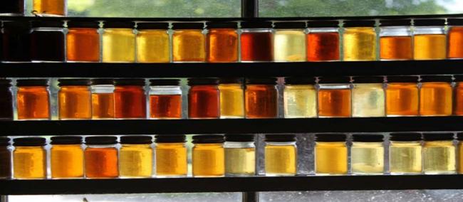 les types de miel commercialisés au Maroc