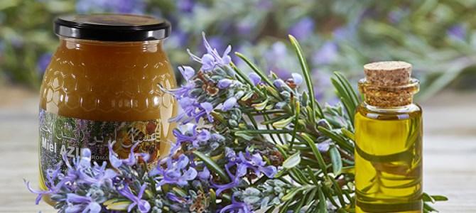 Le miel de romarin – Azir- et ses secrets