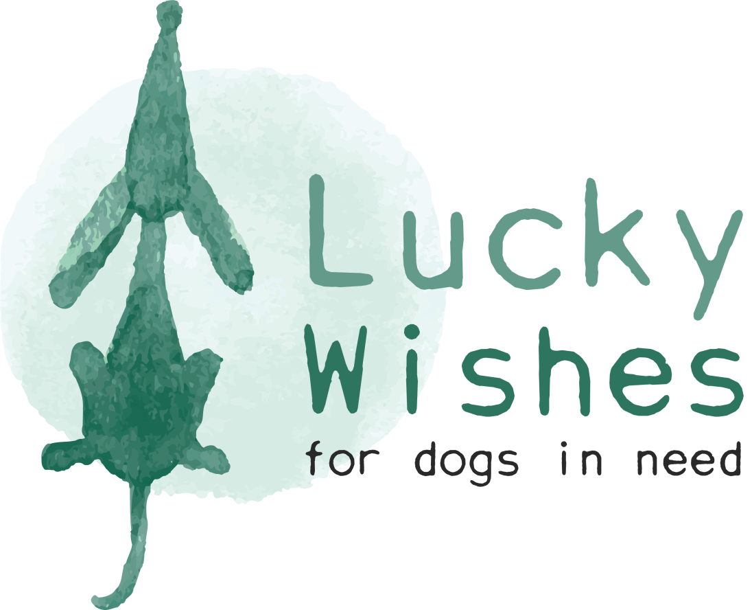 Lucky Wishes | Logo