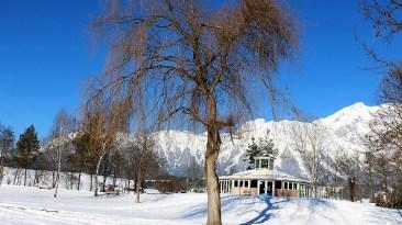 Die Eisdecke am Badesee ist stabil für Kufensportler, Foto: Knut Kuckel
