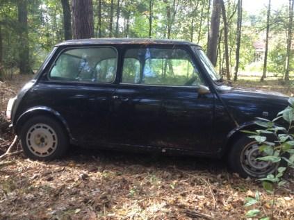 Mini 1000 zwart