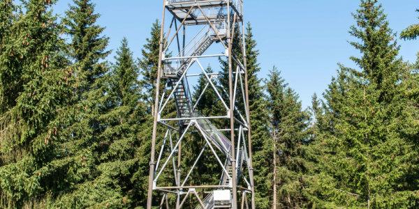 Wildwiesenhof Imagebilder 2020 7