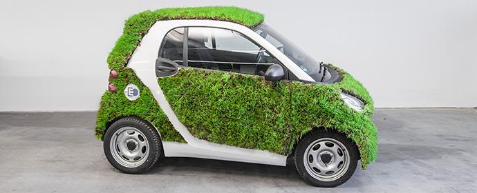 moovel macht was Verrücktes mit Gras