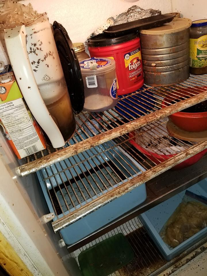 Des vers dans le frigidaire !