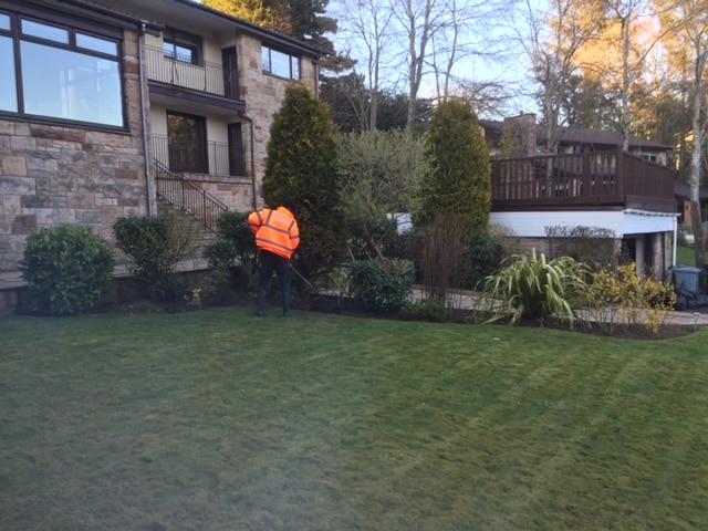 Garden Tidy Up Bothwell 2