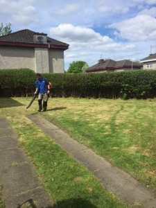 clarkston grass cutting 2