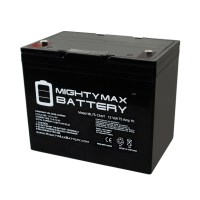 12 Volt 75 AH SLA Internal Thread Battery