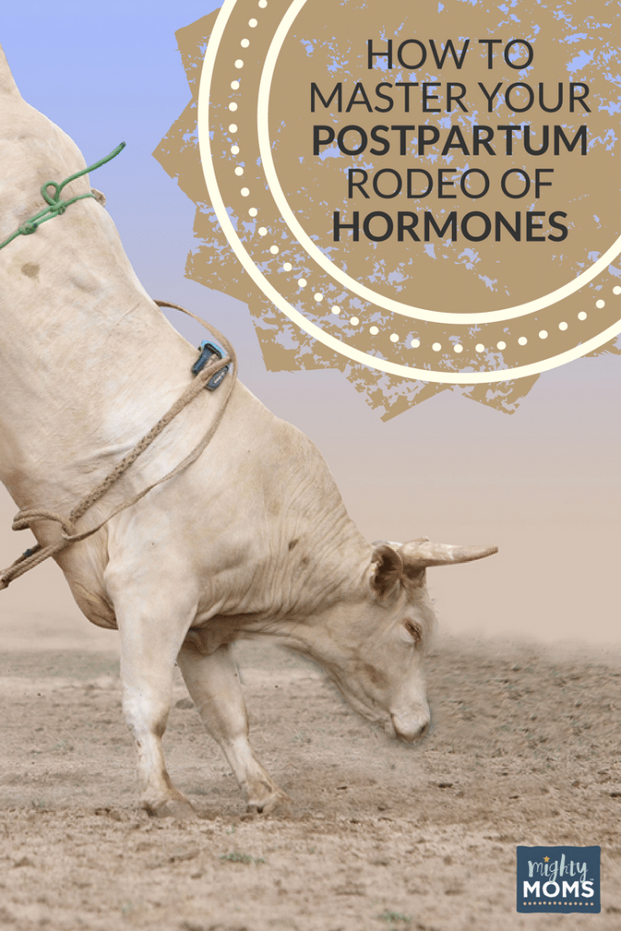 How to Master Your Postpartum Rodeo of Hormones - MightyMoms.club