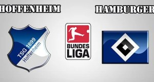 Hoffenheim vs Hamburger Prediction and Betting Tips