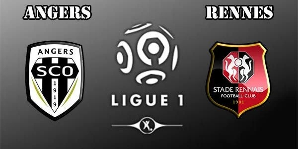 Angers Vs Rennes Stats