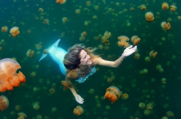 Linde Wolbert: la sirena professionista