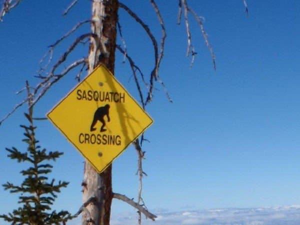 cartello stradale divertente (sasquatch crossing)