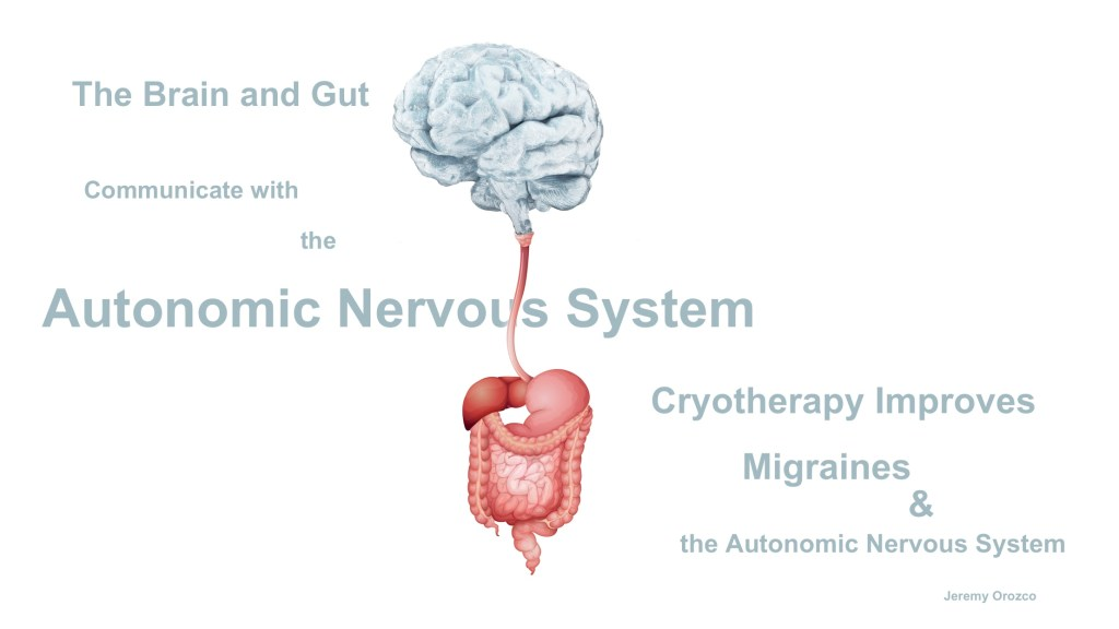 Gut Brain Autonomic Nervous System Migraines
