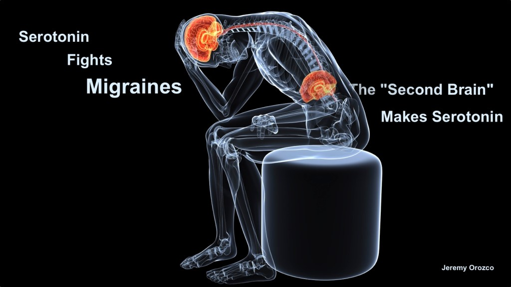 Second brain serotonin migraine