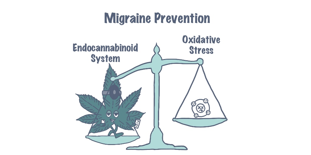 Migraine prevention, oxidative stress, migraine