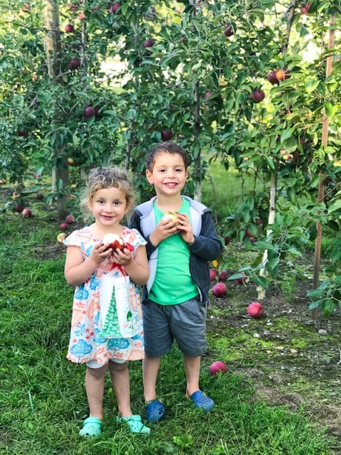 Children in an apple orchard while mom has a migraine