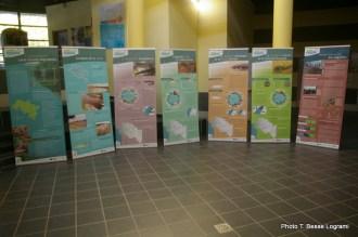 L'exposition Les Grands Migrateurs de la Loire