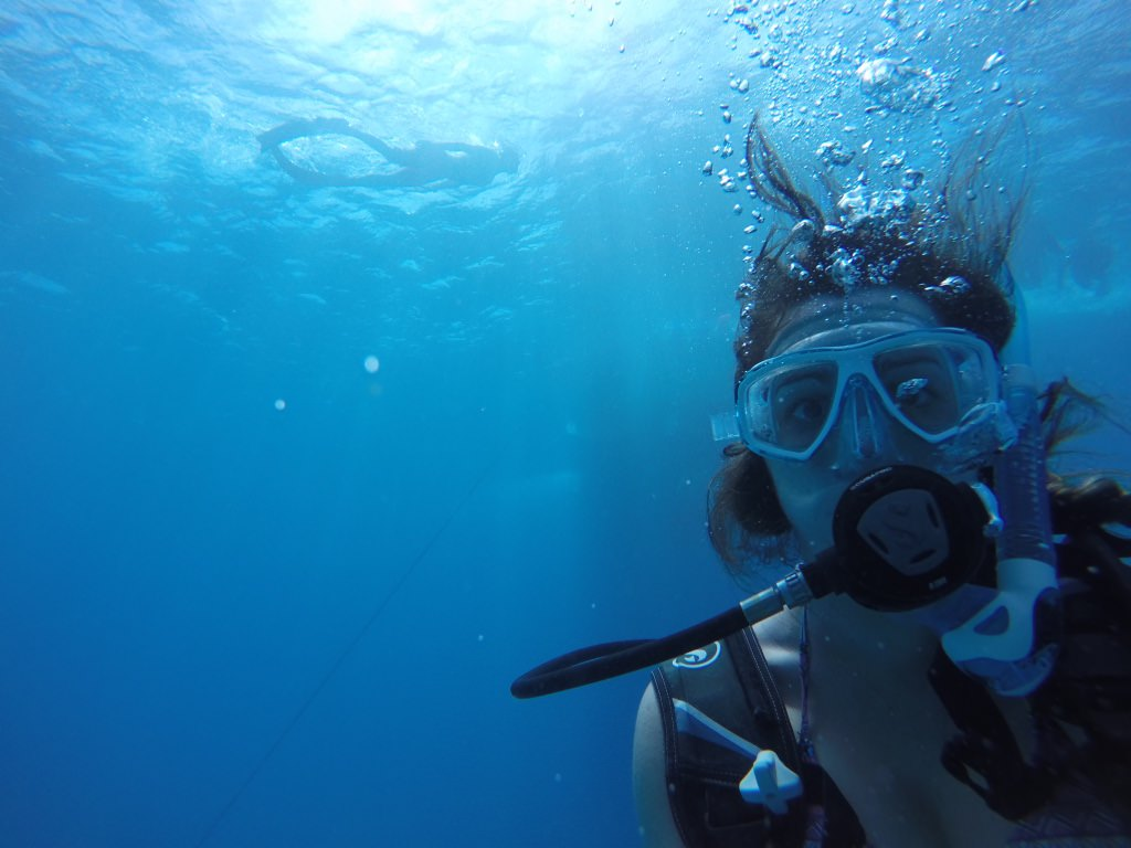 Diving Instructor Travel Job Work Abroad