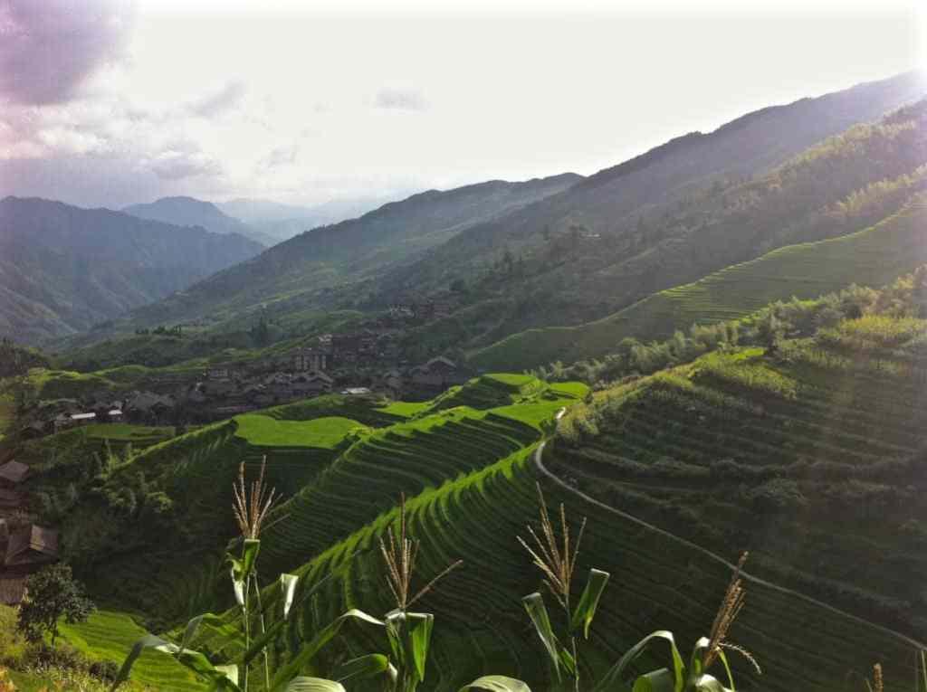 Walking rice terraces china Ping'an Longji Rice Terraces