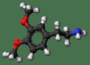 endorfinas, serotonina, dopamina