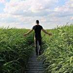 La Calma y cómo lograrla: Trabajando con el inconsciente