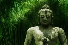 buddha 2267012 640 - Decálogo del Bienestar