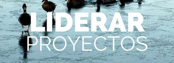Liderar Proyectos