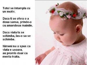viata-merita-traita_7fa3bf8dc5247c