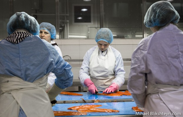 Processing sockeye salmon at the Vityaz-Avto plant