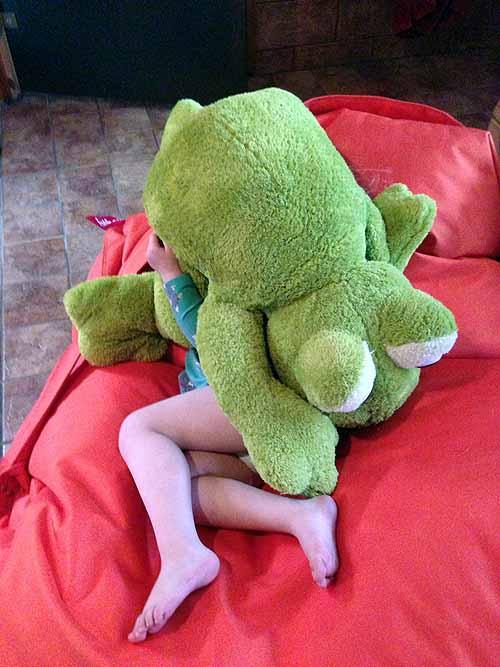 Ipanan yksi uusi joululahja, setänsä perheeltä saama pieni sammakko. Ihan pikkasen ihana :)