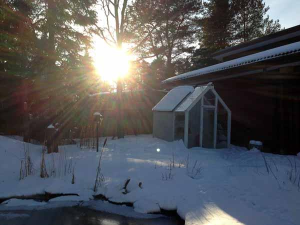Aurinkoa kotipihalta.