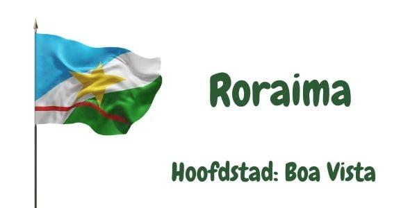 Vlag van de Braziliaanse deelstaat Roraima met als hoofdstad Boa Vista
